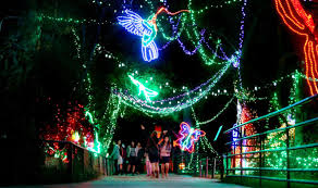 Zoo Lights Tucson Zoo Lights Now Open At Reid Park In Tucson Local News