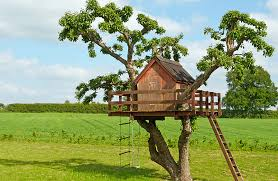 Treehouses for kids Amazing Nicetreehousesforkids Go Workout Mom Nice Treehouses For Kids Optimizing Home Decor Ideas Ideas To