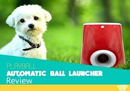 automatic ball launcher launcher review is it as good automatic ball thrower for dogs bedrooms 1 automatic ball launcher