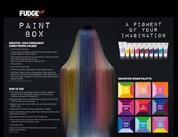 Fudge Hair Dye Colour Chart Fudge Professional Paint Box Unlimited Shade Palette Hair