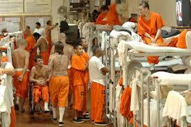 immigration reform essay prison essay pixels help journalism  prison essay pixels prison reform essay immigration