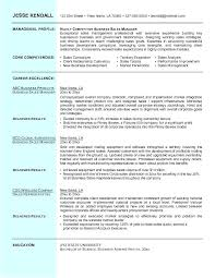 Best Business Resume Template Professional Business Resume Template Johnsimpson Co