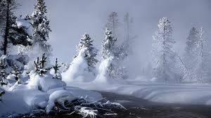 winter nature backgrounds. Contemporary Nature Mystic Winter Wallpaper Nature Wallpapers Intended Backgrounds A