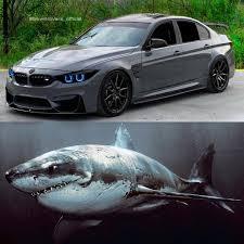 Bmw Shark Design Bmw M3 Shark