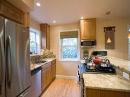 Image Of: Plenteous Galley Kitchen Remodel Ideas