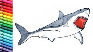 Small Picture Shark Drawing and Coloring Pages for Children Megalodon Dinosaur