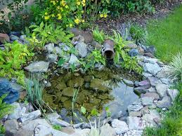 Small Picture Small Garden Pond Gardening Ideas