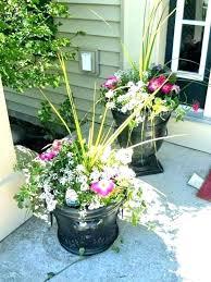outdoor plants in pots ideas large outdoor flower pots large outdoor flower pots large outdoor planter