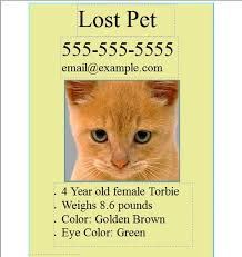 Missing Cat Poster Template Lost Cat Poster Template Barca Fontanacountryinn Com