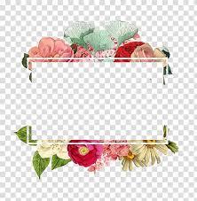 Paper With Flower Border Flower Paper Logo Flowers Border Assorted Color Petaled