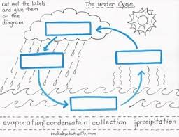 Small Picture The Water Cycle Lesson Plan with Hand Drawn Printables Frskola