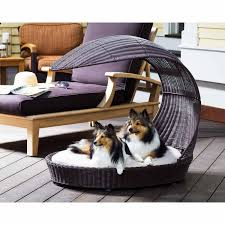 com outdoor dog chaise bed n espresso large dog beds pet supplies