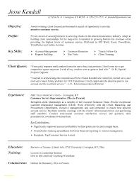 Resume Samples For Customer Service Representative Customer Service Representative Resume Sample Tjfs Journal Org