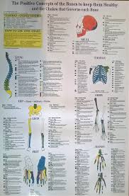 Kinesiology Emotion Chart Skeletal Emotion Chakra Chart