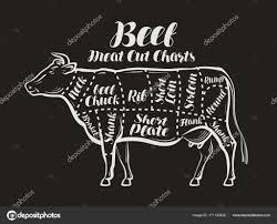 肉はカット図です牛牛肉の概念メニュー レストランや肉屋店