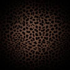 colorful cheetah print backgrounds for twitter 1024x1024