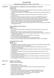 Marketing Manager Uk Resume Samples Velvet Jobs