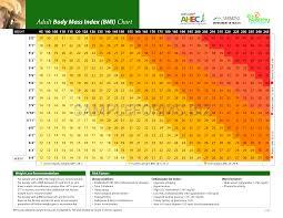 Bmi Chart Pdf Preview Pdf Adult Body Mass Index Bmi Chart 2