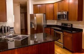 Kitchen Cabinets Refrigerator House Idea Kitchen Cabinet Painting Furnished Wooden Kitchen