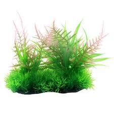 Лучшая цена на <b>искусственное растение</b> зебры 27 <b>грин</b> ...
