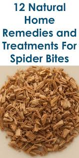 Spider Bite Identification Chart Pictures 12 Quality Home Remedies For Spider Bites Life Hacks