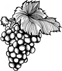 grapes clipart black and white. vintage style bunch of grapes clipart black and white