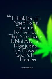 🍍 Funny Weed Quotes Slogans Hash Marijuana Joint Unique Stoner Friendship Quotes