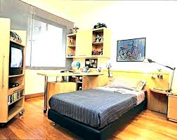 Cool Bedroom Ideas For Guys New Inspiration Design