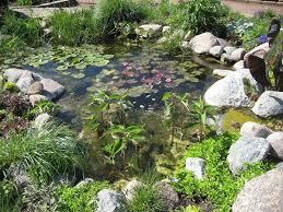 Small Picture Garden Design Garden Design with Dixons Landscape Gardening Pond