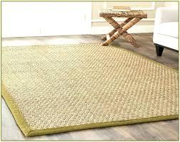synthetic sisal area rug sisal area rugs sisal area rugs home design ideas sisal area rugs synthetic sisal area rug