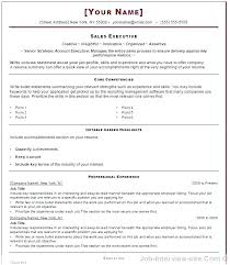 Word Resumes Templates Professional Resume Templates Professional