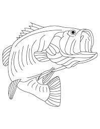 Small Picture Jumping Fish Coloring Pages Coloring Home