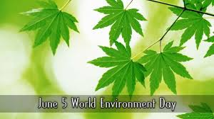 world environment day essay topics world environment day essay topics
