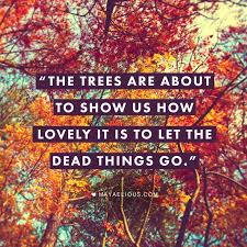 Autumn Quotes Amazing This Quote Anonymous Speaks For Itself Stop Giving Life To Dead