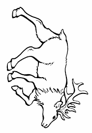 Small Picture Coloring Pages Elk Coloring Coloring Coloring Pages
