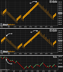Ninjatrader Renko Charts Siprorenko Bar Sharkindicators