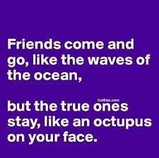 Funny Best Friend Quotes Unique 48 Wonderful Funny Best Friend Quotes New Funniest Best Friend