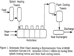 Types Of Pressure Oxidation Autoclave Lining