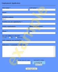 Free Online Job Application Templates Ready To Use Employment Application Form