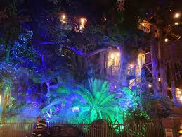 lighting effects the swiss family robinson treehouse has special lighting effects during mickey