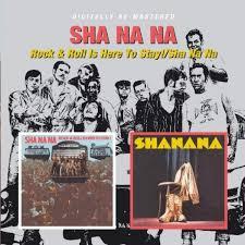 sha na na rock roll is here to stay sha na na
