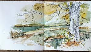 cathy johnson | Nature sketch, Sketchbook art journal, Watercolor sketch