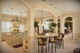 Kitchen Sparkling Kitchen Amazing Kitchen And Living Room Designs