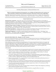 Excellent Project Manager Resume Sample Objective Inspirational