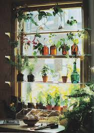 Kitchen Window Garden Kitchen Window Idea Kitchen Pinterest Gardens Glass Bottles