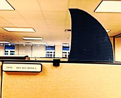 office cubicle decoration themes. Office:20 Creative Diy Cubicle Decorating Ideas Shark Week And With Office Alluring Images Decor Decoration Themes