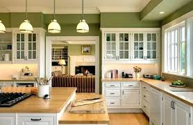 What Color To Paint Kitchen With Dark Cabinets Custom Design Inspiration