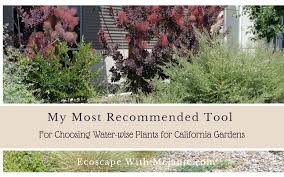 my most recommended tool for choosing water wise plants for california gardens