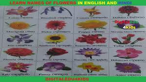 english flowers names