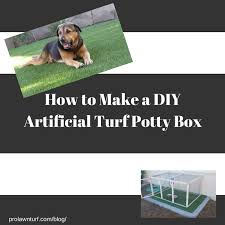 a picture of a dog laying on artificial turf and a dog potty box with how